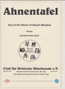 Stormy - Ahnentafel 1
